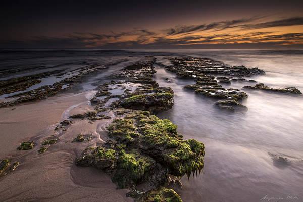 Seadragon Photograph - Seadragon by Ben Watson