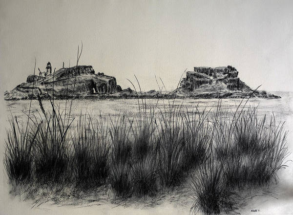 Beach Grass Drawing - Seagrass And Fidra by Michelle Bailey