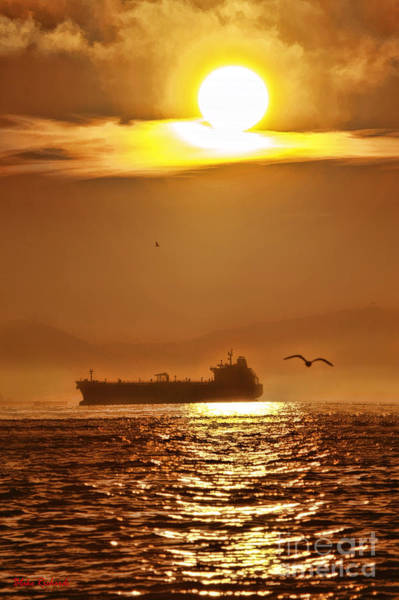 Photograph - Seagull And Ship by Blake Richards