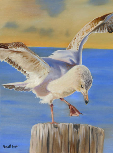Wall Art - Painting - Seagull Ballet by Phyllis Beiser