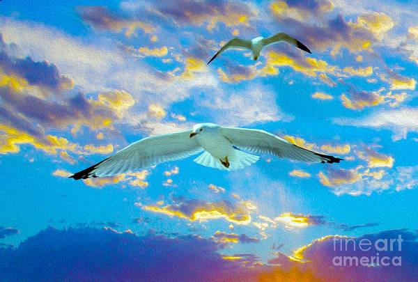 Wild Life Mixed Media - Seagulls  by Jon Neidert