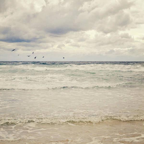 Randle Photograph - Seagulls Take Flight Over Sea by Photo - Lyn Randle
