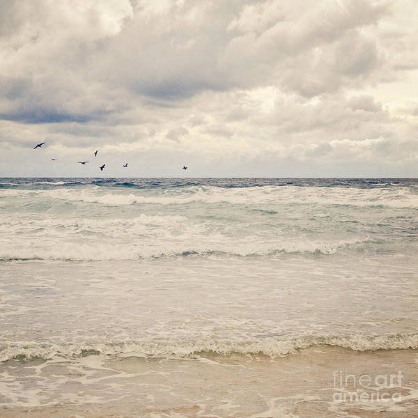 Wall Art - Photograph - Seagulls Take Flight Over The Sea by Lyn Randle