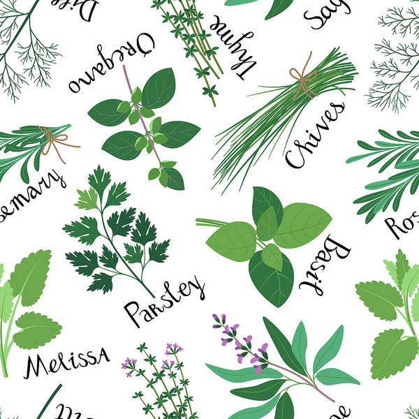 Vegetarian Digital Art - Seamless Pattern Fresh Herbs by Innabodrova