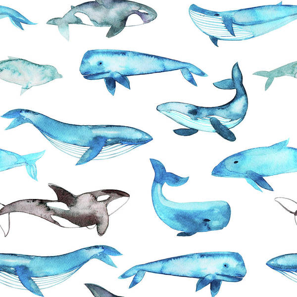 Photograph - Seamless Pattern With Watercolor Whales by Asya mix