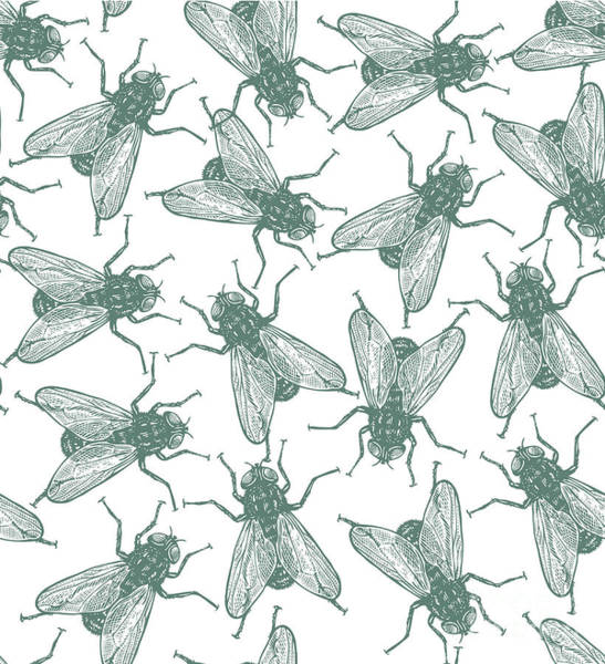 Engraved Digital Art - Seamless Vector Flies Pattern In by Lestyan