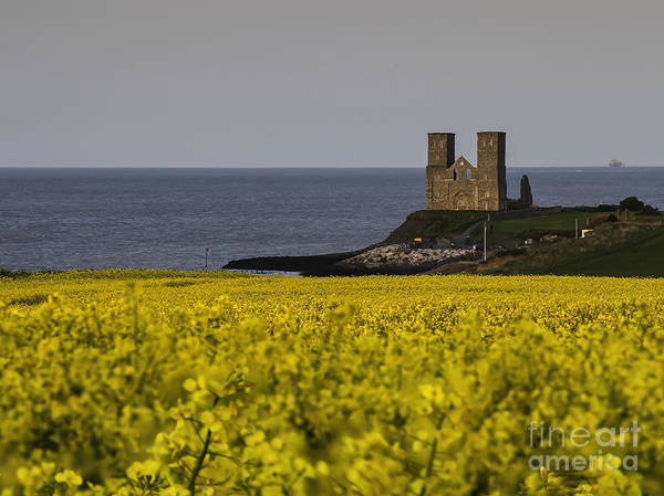Wall Art - Photograph - Seas Of Yellow And Blue by Nigel Jones