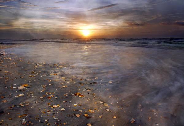 Nc Wall Art - Photograph - Seashell Sunrise by Betsy Knapp