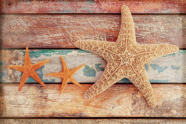 Starfish Photograph - Seaside Memories by Cora Niele