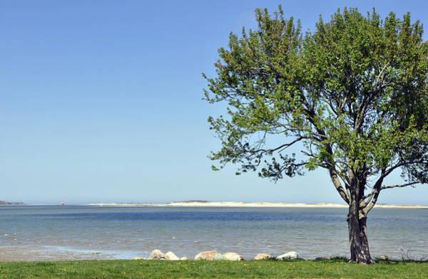 Photograph - Seaside Serenity by Joanne Brown