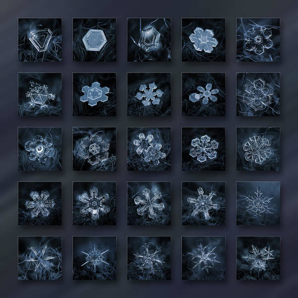 Photograph - Snowflake Collage - Season 2013 Dark Crystals by Alexey Kljatov
