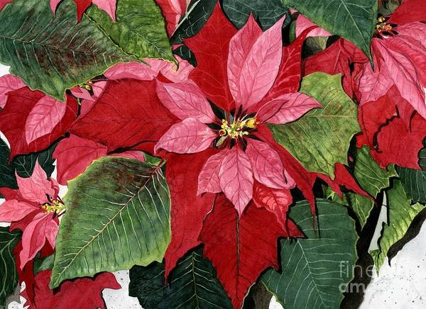 Wall Art - Painting - Seasonal Scarlet by Barbara Jewell