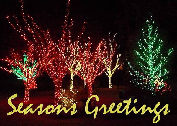 Painting - Seasons Greetings by Darren Robinson