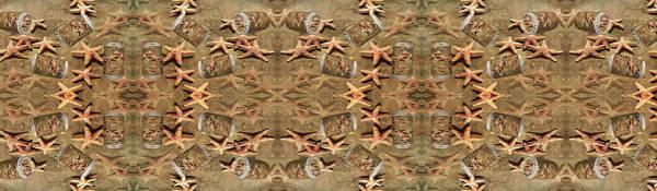Wall Art - Digital Art - Seastar Large Banner II by Betsy Knapp