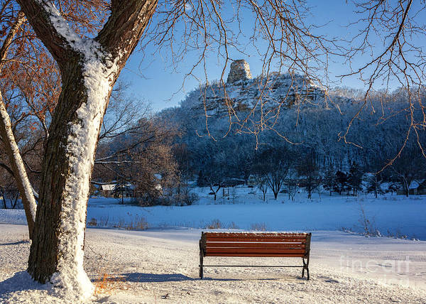 Seat With A View In Winter Art Print by Kari Yearous