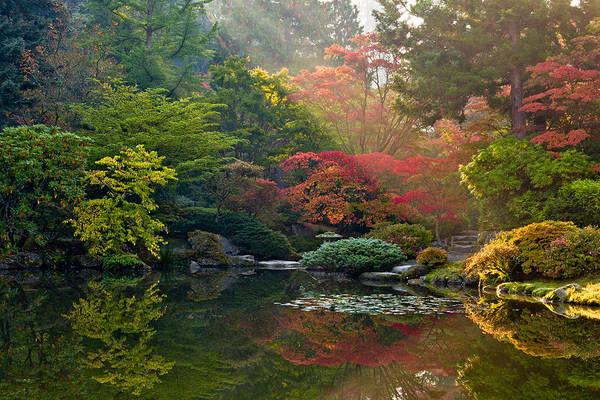Arboretums Photograph - Seattle Japanese Garden Light by Thorsten Scheuermann