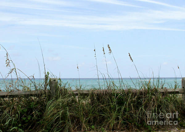Photograph - Seaview by Sabrina L Ryan
