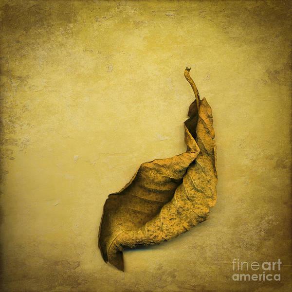 Gold Leaves Digital Art - Second In Line by Jan Bickerton