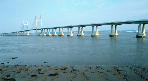 Cable-stayed Bridge Photograph - Second Severn Crossing by Robert Brook/science Photo Library