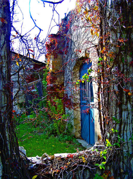 Photograph - Secret Garden by Jp Grace