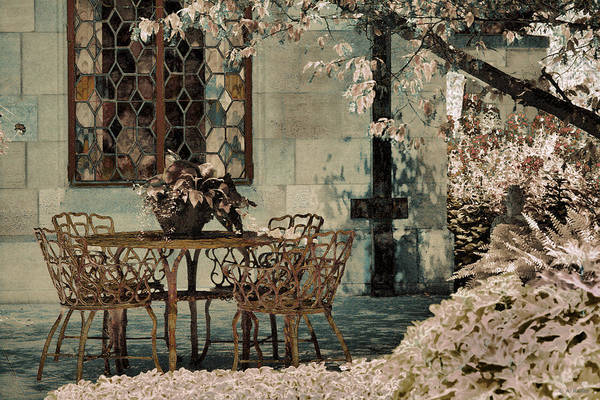 Photograph - Secret Garden by Lauren Radke