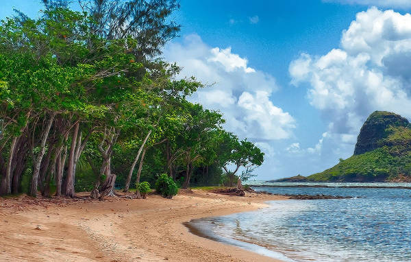 Photograph - Secret Island Beach by Dan McManus