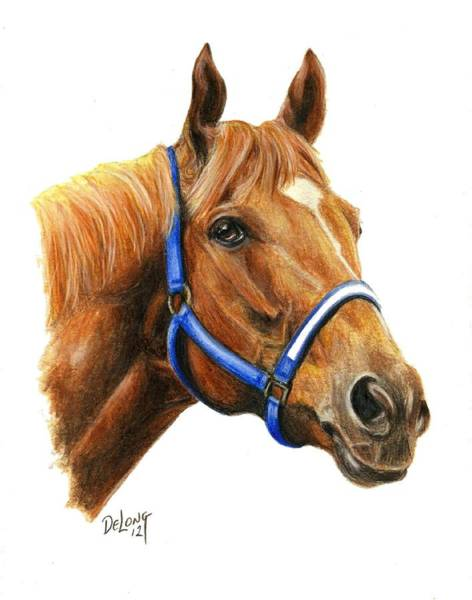 Wall Art - Painting - Secretariat With Halter by Pat DeLong
