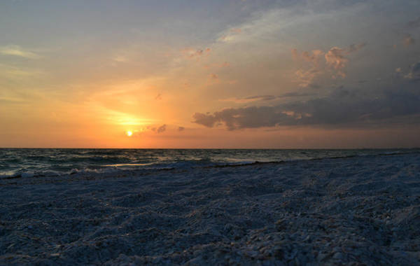 Photograph - Secrets Of The Sea by Melanie Moraga