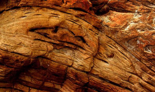 Photograph - Sediment by Randal Bruck
