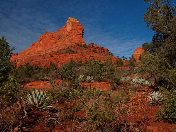 Photograph - Sedona by James Peterson