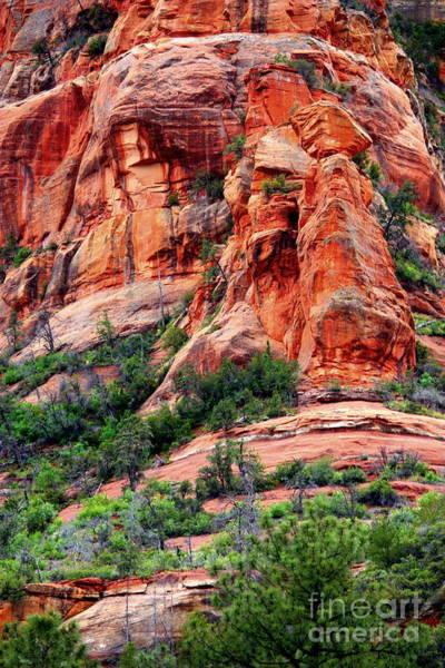 Red Rocks Of Sedona Photograph - Sedona Perspective by Carol Groenen