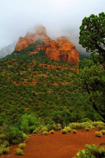 Photograph - Sedona Red Rocks II by Tom Singleton