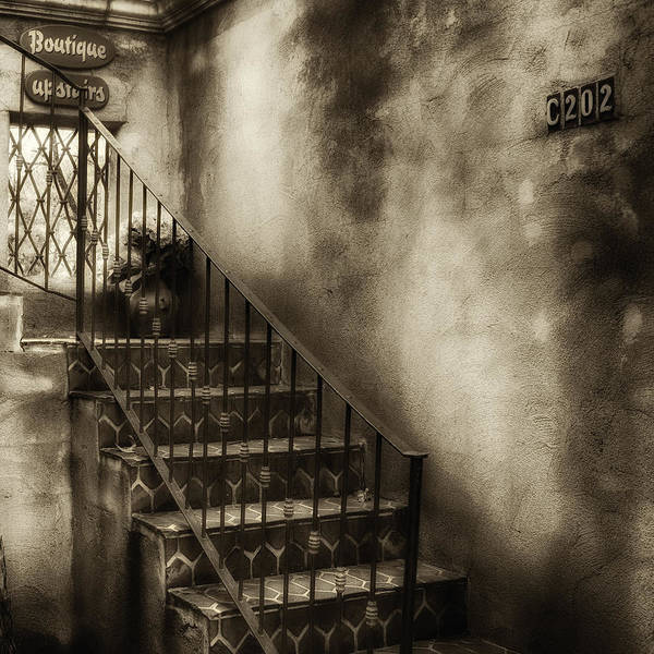 Photograph - Sedona Stairway Sepia by Ron White