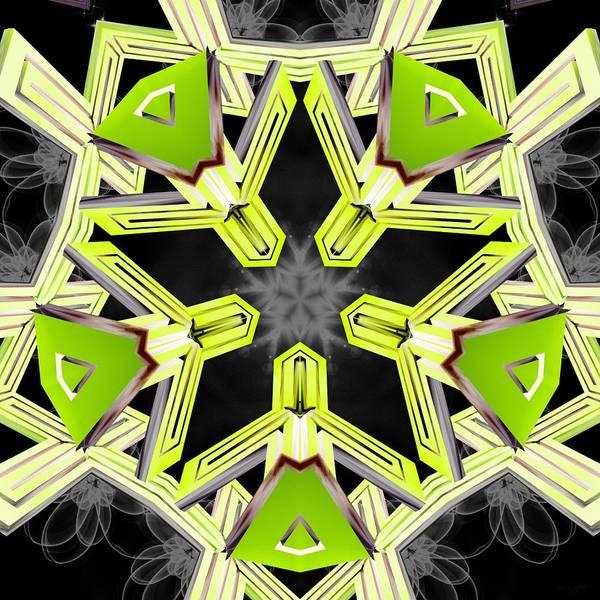 Digital Art - Seeds Of Balance 16 by Derek Gedney