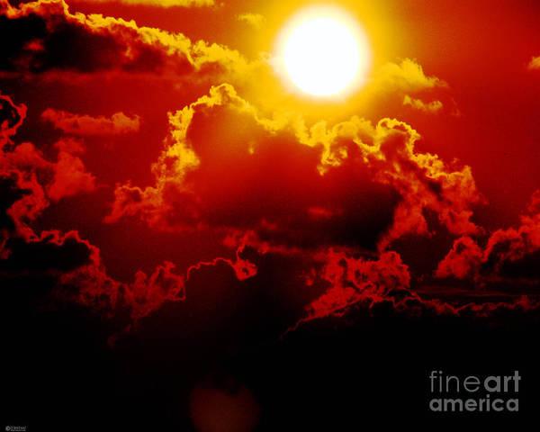 Photograph - Seeing Red by Lizi Beard-Ward