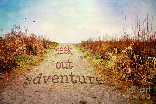 Wall Art - Photograph - Seek Out Adventure by Sylvia Cook