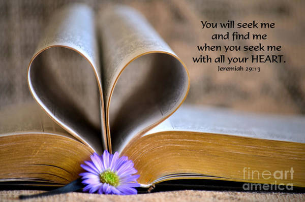 Scripture Photograph - Seeking by Deb Halloran
