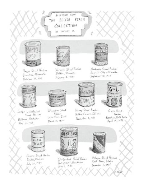 Hobbies Drawing - Selections From The Sliced Peach Collection by Roz Chast