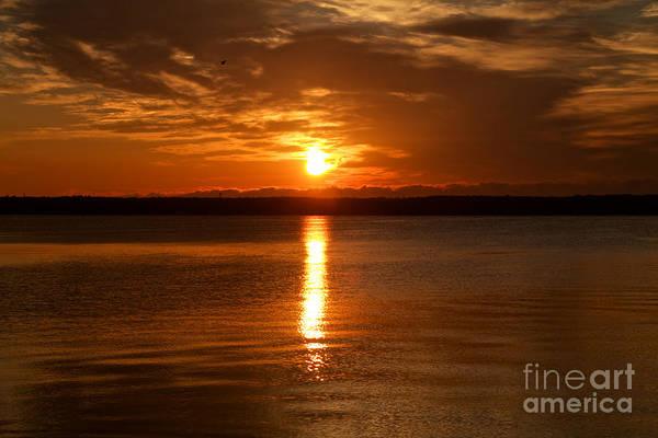 Photograph - Seneca Sunrise by William Norton
