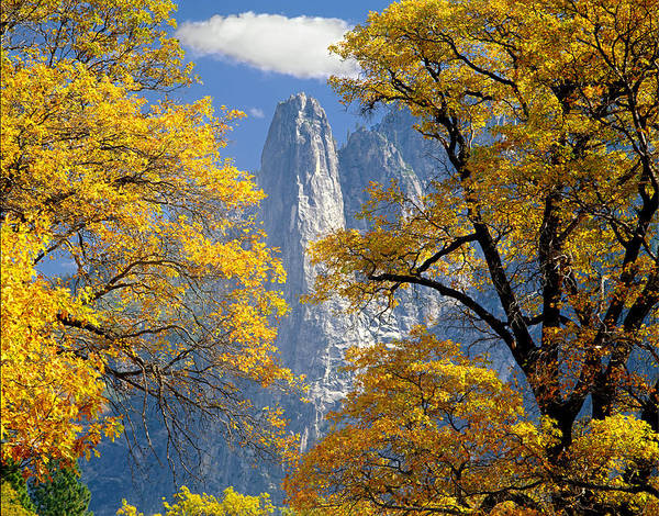 Photograph - 2m6703-sentinel Rock In Autumn by Ed  Cooper Photography