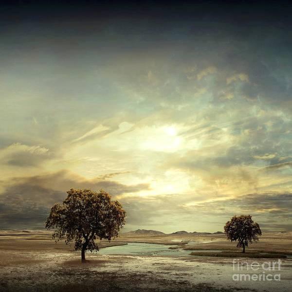 Grass Tree Digital Art - Separating River by Franziskus Pfleghart