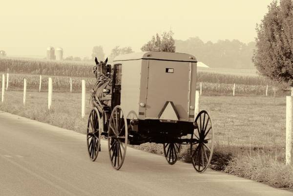 Wall Art - Photograph - Sepia Amish Buggy by Dan Sproul