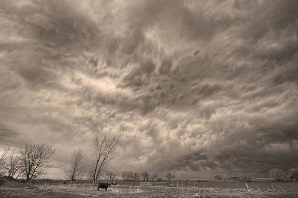 Photograph - Sepia Angry Skies by James BO Insogna