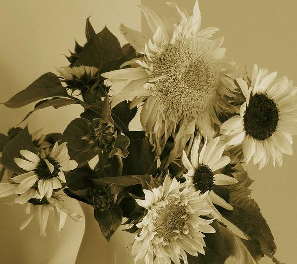 Photograph - Sepia Garden Sunflower Bouquet by Mary Wolf