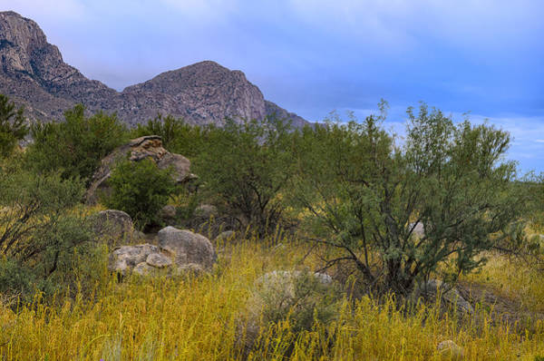 Photograph - September Oasis No.1 by Mark Myhaver