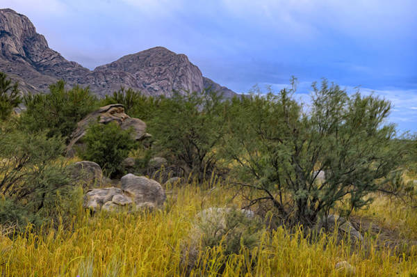 Photograph - September Oasis No.3 by Mark Myhaver