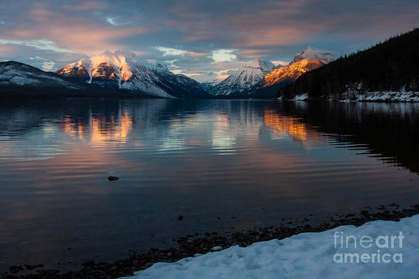 Photograph - Serenade by Katie LaSalle-Lowery