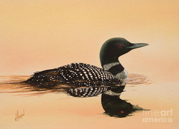 Loon Painting - Serene Beauty by James Williamson