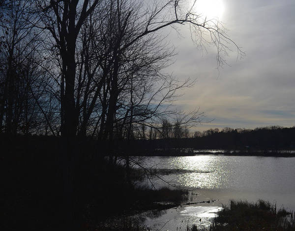 Photograph - Serene Reflection In The Adirondack Region by Maggy Marsh