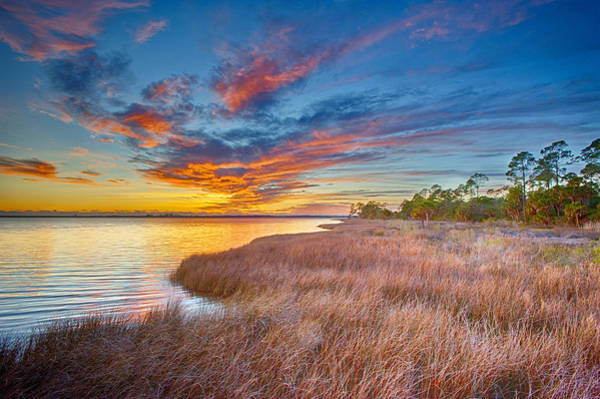 Sawgrass Digital Art - Serenity At East Bay by Gregory W Leary